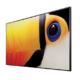 Großer Schwarzer LCD Bildschirm von CHRISTIE UHD